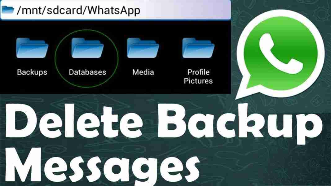 Eliminare backup di WhatsApp su Android per liberare spazio