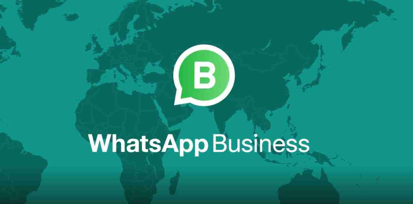 WhatsApp Business: cos'è e come funziona